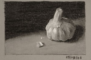 Garlic Bulb – Still life Drawing Number Thirty-two