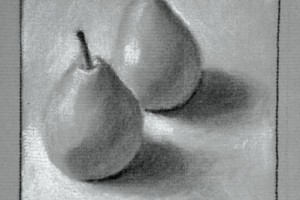 Still life Drawing Number Eleven – Two Pears