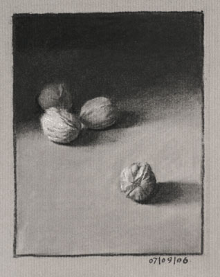 Still life drawing number twenty - walnuts