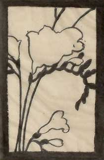 Composition studies - brush and ink drawing of freesias in a rectangular format, white bacground