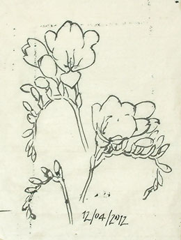 A second tracing of the tracings of the freesia drawings.