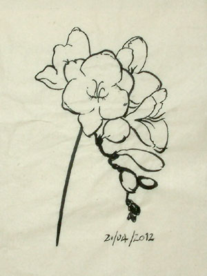 A further refinement of the flower drawing.