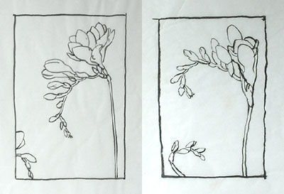 Chinese brush drawings of freesias