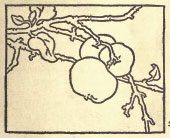 Line drawing from the Dow book on composition