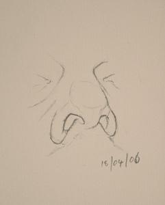 Nose drawing number twelve