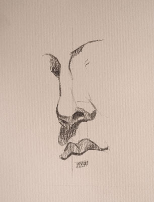 Nose drawing number nineteen