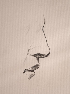 Nose drawing number twenty