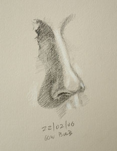 Nose drawing number five