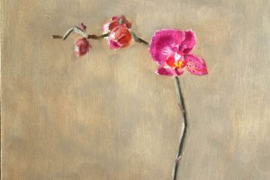 Orchid, A Still Life Painting In Oils On Panel