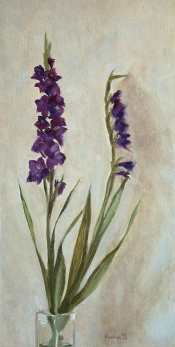 purple-gladioli