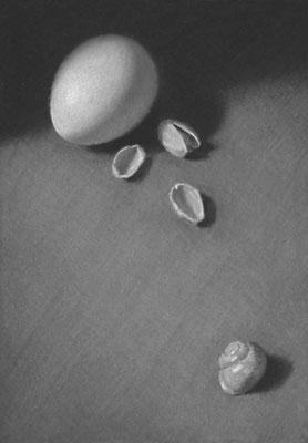 shells-3-small