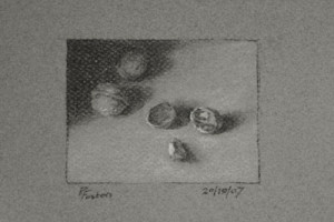 Walnuts, a Still Life Value Study