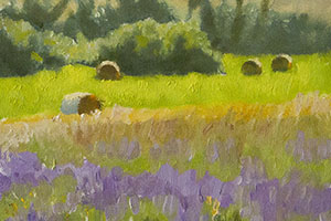 Lavender and Hay Bales in Sault, Provence