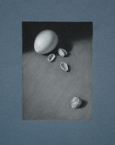 shells-portfolio