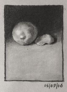Still life drawing number seventeen - Lemon and Sea Shell