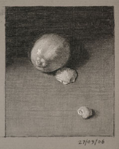 Still life drawing number Thirty-four - Lemon and Shells