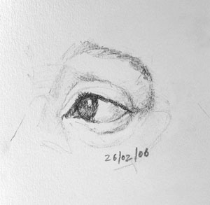 Eye drawing number eight