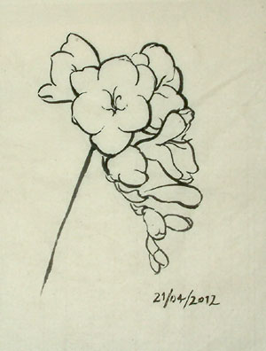 A refinement of the flower drawing, trying to achieve a more beautiful quality of line.