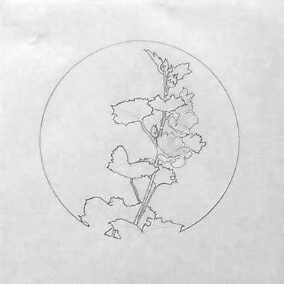 A drawing of hollyhocks