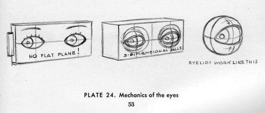 Loomis drawing of eyes.
