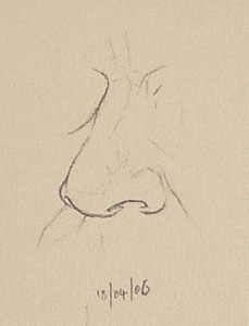 Nose drawing number eleven