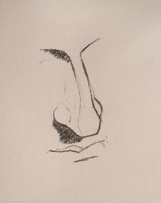 Nose drawing number eighteen