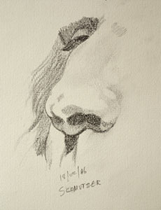 Nose drawing number three