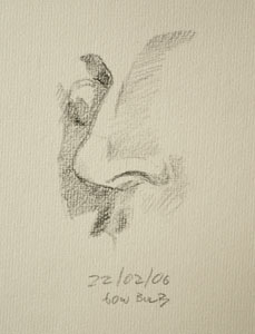 Nose drawing number six
