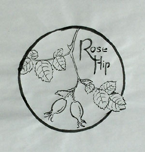 Chinese ink drawing of rosehips