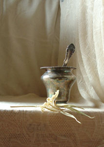 silver vase photo 1