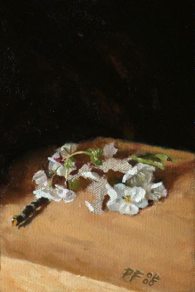 wilting-cherry-blossom4