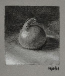 Onion - a Charcoal Still Life Study