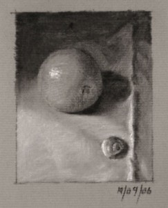 Orange and a Shell - Still Life Drawing